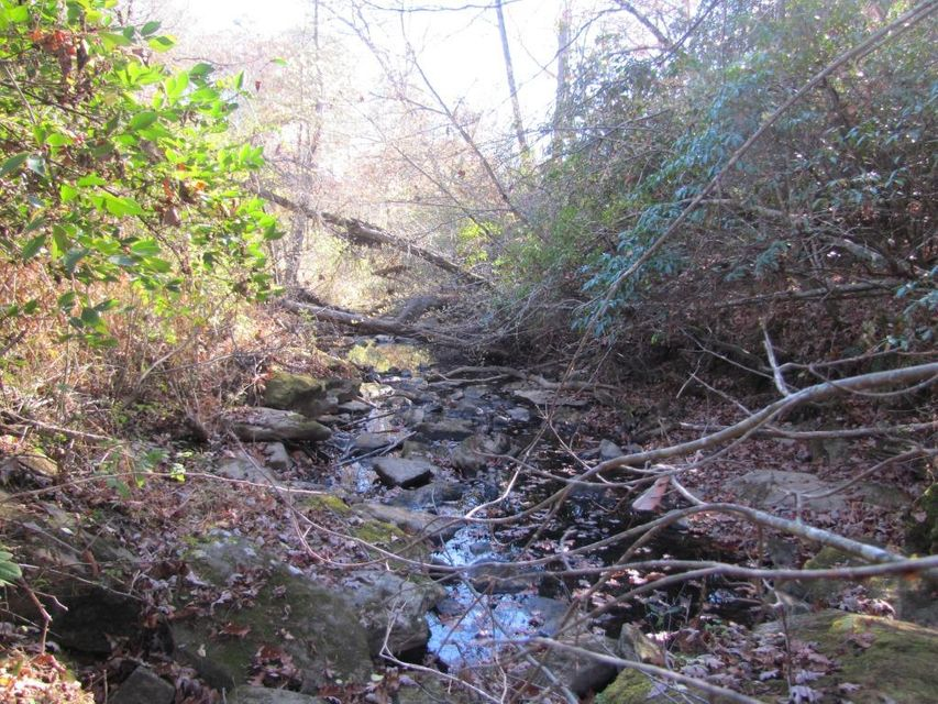 Additional photo for property listing at Lot 29 Oakmont Court  Crossville, Tennessee 38555 États-Unis