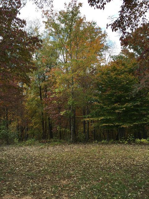 Additional photo for property listing at 1909 Oakleigh Way  Knoxville, Tennessee 37919 Estados Unidos