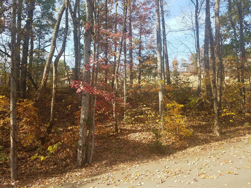 Additional photo for property listing at Lot 578 Tortoiseshell Circle Lot 578 Tortoiseshell Circle New Tazewell, Tennessee 37825 United States