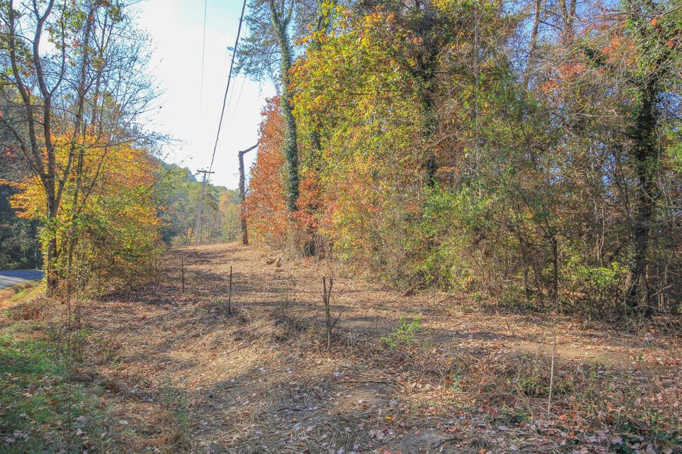 Additional photo for property listing at Tract 2 Self Hollow Road Tract 2 Self Hollow Road Rockford, 田纳西州 37853 美国