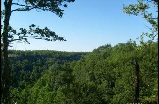 Land for Sale at Bobcat Lane East Wilder, Tennessee 38589 United States