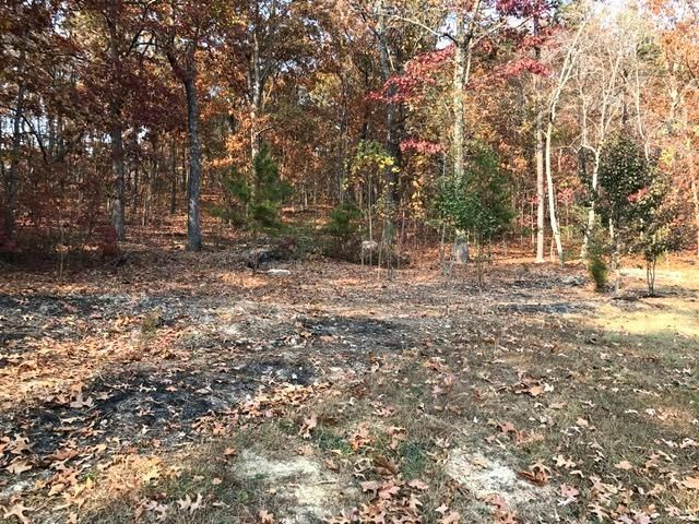 Additional photo for property listing at S Ridge Avenue  Rockwood, Tennessee 37854 Estados Unidos