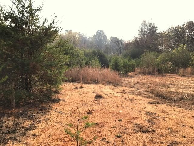 Additional photo for property listing at Us Hwy 61  Rockwood, Tennessee 37854 Estados Unidos