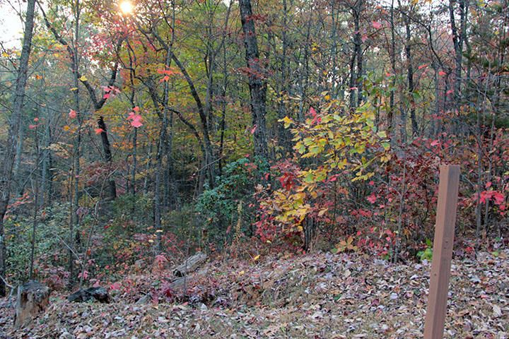 Land for Sale at Lot 36 Loafers Glory Way Lot 36 Loafers Glory Way Gatlinburg, Tennessee 37738 United States