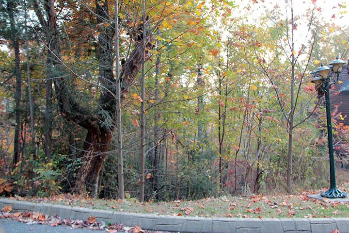 Additional photo for property listing at Lot 23 Settlers Ridge Way Lot 23 Settlers Ridge Way Gatlinburg, Теннесси 37738 Соединенные Штаты