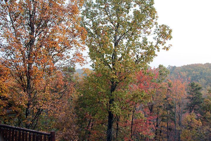 Additional photo for property listing at Lot 27 Settlers Ridge Way  Gatlinburg, Tennessee 37738 Estados Unidos