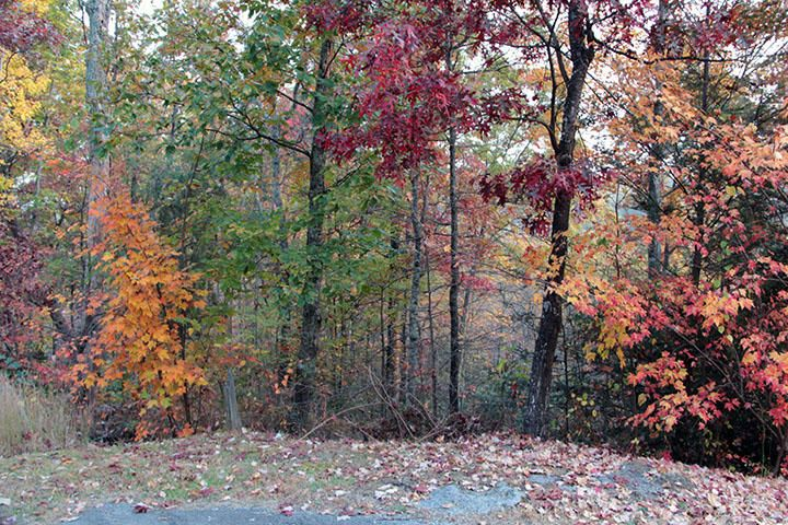 Additional photo for property listing at Lot 28 Settlers Ridge Way  Gatlinburg, Tennessee 37738 United States