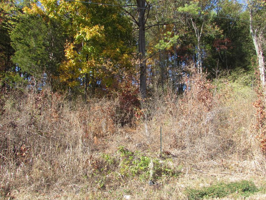 Additional photo for property listing at Lot #9 Jackson Drive Lot #9 Jackson Drive Madisonville, Tennessee 37354 Estados Unidos