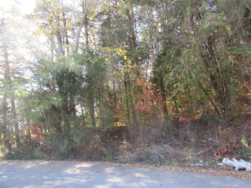 Additional photo for property listing at Lot #8 Jackson Drive  Madisonville, Tennessee 37354 Estados Unidos