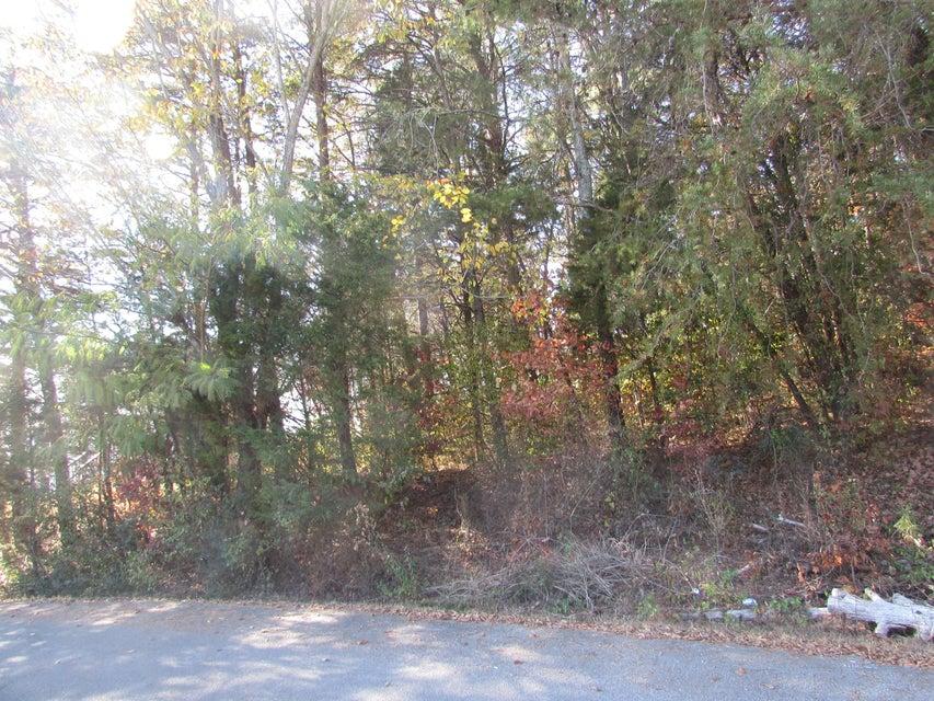 Additional photo for property listing at Lot #8 Jackson Drive Lot #8 Jackson Drive Madisonville, 田纳西州 37354 美国