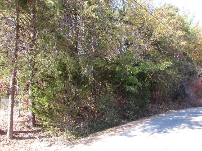土地 为 销售 在 Lot #8 Jackson Drive Lot #8 Jackson Drive Madisonville, 田纳西州 37354 美国