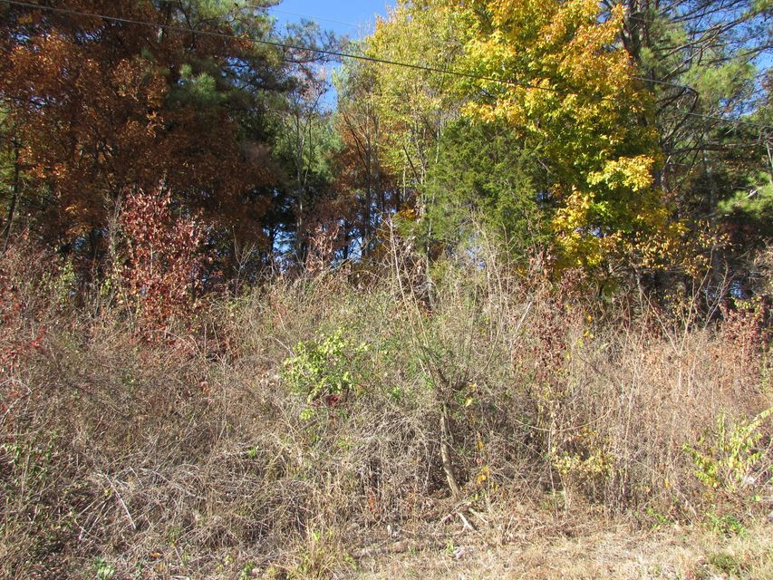 Additional photo for property listing at Lot #8 Jackson Drive Lot #8 Jackson Drive Madisonville, Tennessee 37354 Estados Unidos