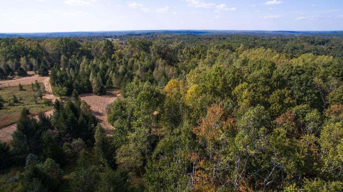 Land for Sale at Coon Creek Road Sunbright, Tennessee 37872 United States