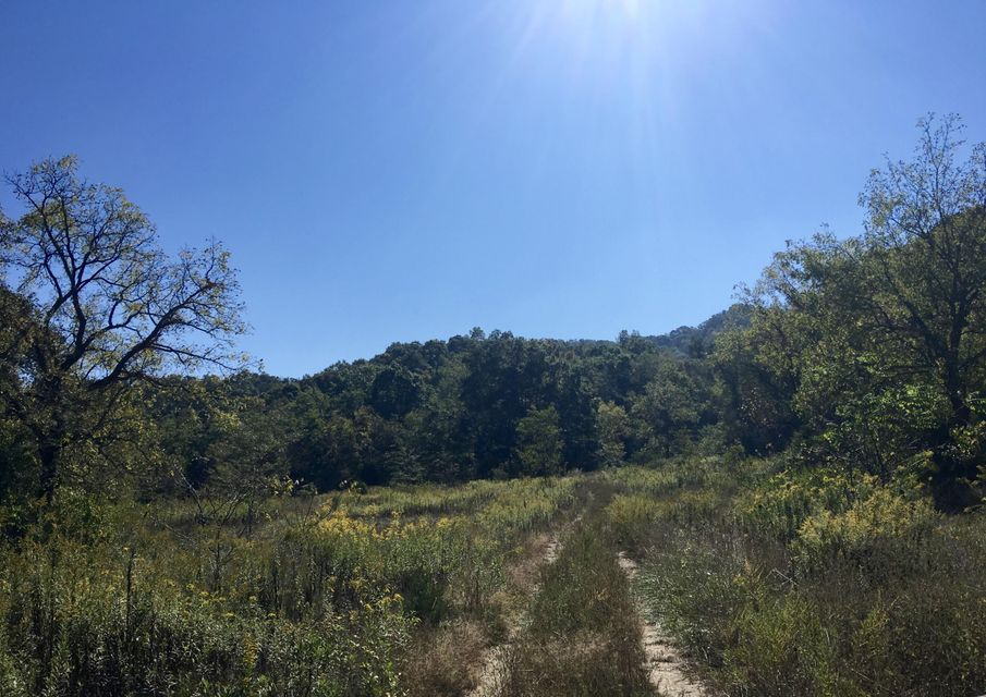 Additional photo for property listing at 104 Acres Rocky Springs Road  Bean Station, Tennessee 37708 États-Unis