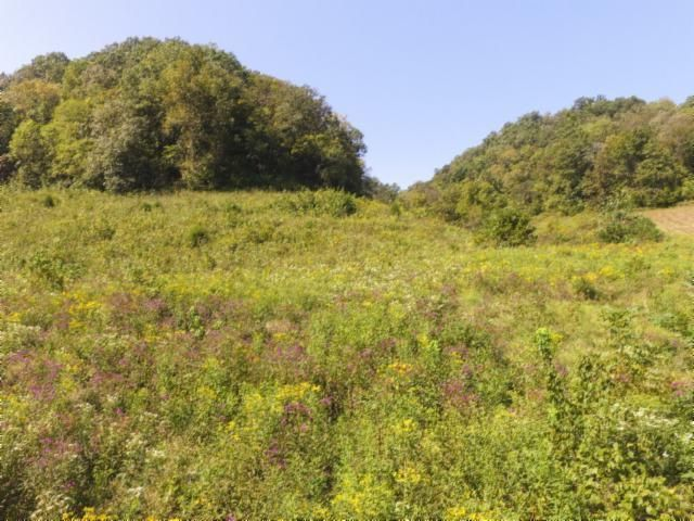Land for Sale at 153.96 Ac. South Fork Road Whitleyville, Tennessee 38588 United States
