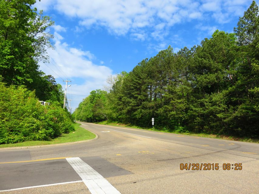Additional photo for property listing at Hwy 25/70 Hwy 25/70 丹德里奇, 田纳西州 37725 美国
