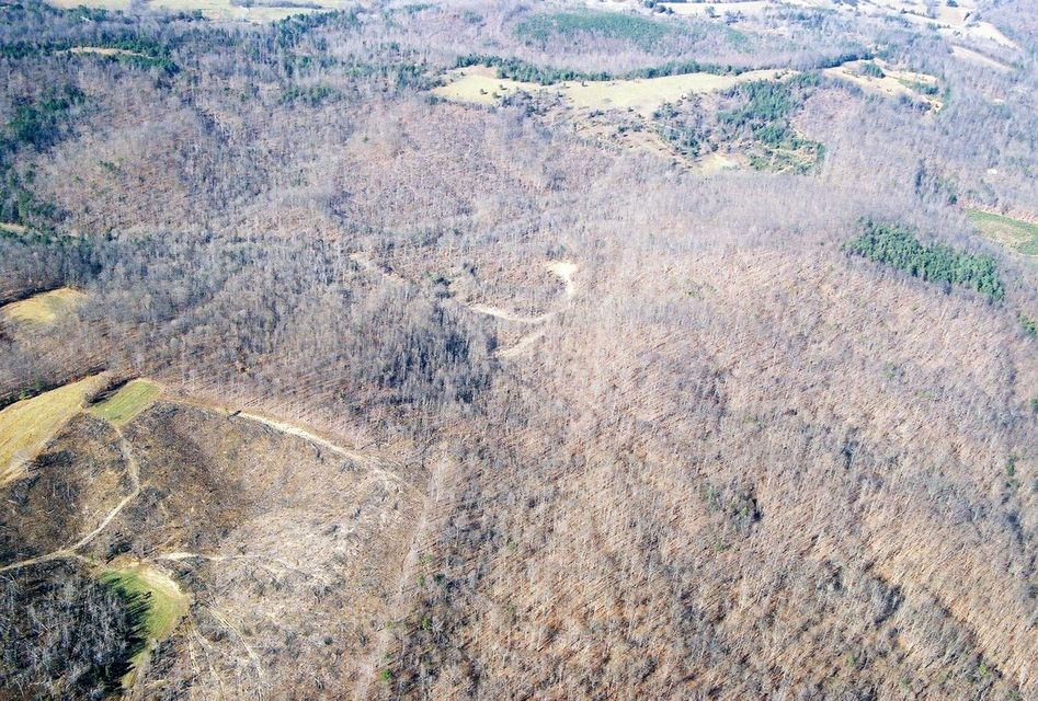 Terrain pour l Vente à County Road 51 County Road 51 Riceville, Tennessee 37370 États-Unis