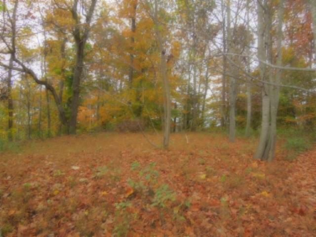 Land for Sale at Lot 135 Lakeview Drive Byrdstown, Tennessee 38549 United States