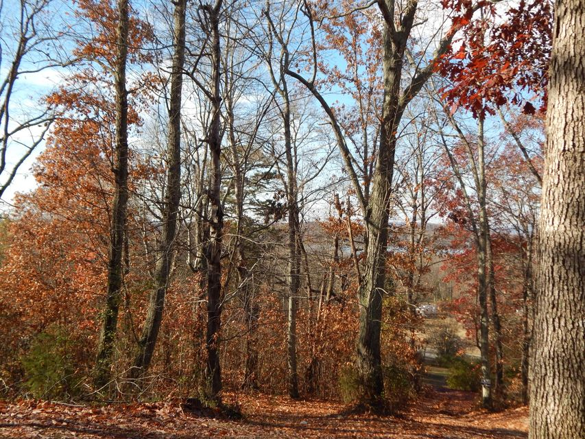 Additional photo for property listing at 137 Sunset View Drive  Kingston, Tennessee 37763 Estados Unidos