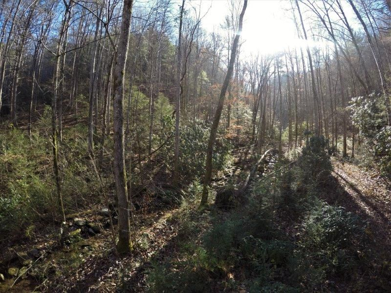 Additional photo for property listing at 300 Chestnut Valley Road  Vonore, Tennessee 37885 Estados Unidos