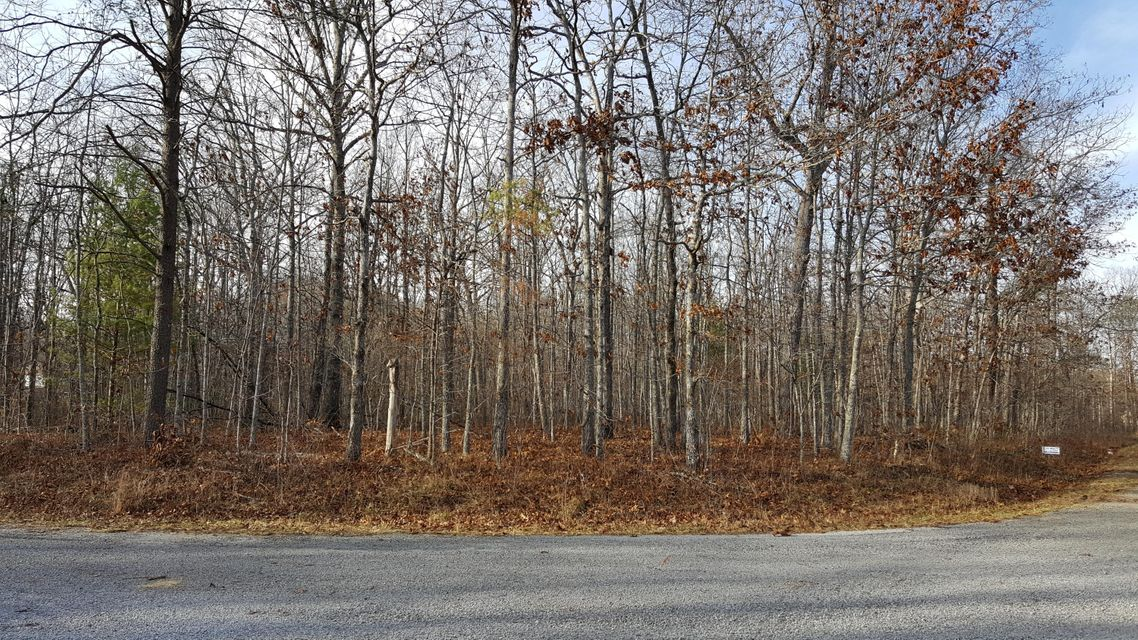 Additional photo for property listing at 917 Cahita Lane 917 Cahita Lane Crossville, Tennessee 38572 États-Unis