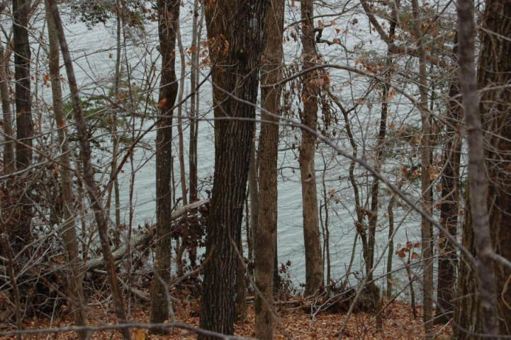 Additional photo for property listing at Lot 127 Thief Neck Drive Lot 127 Thief Neck Drive Rockwood, Tennessee 37854 Estados Unidos