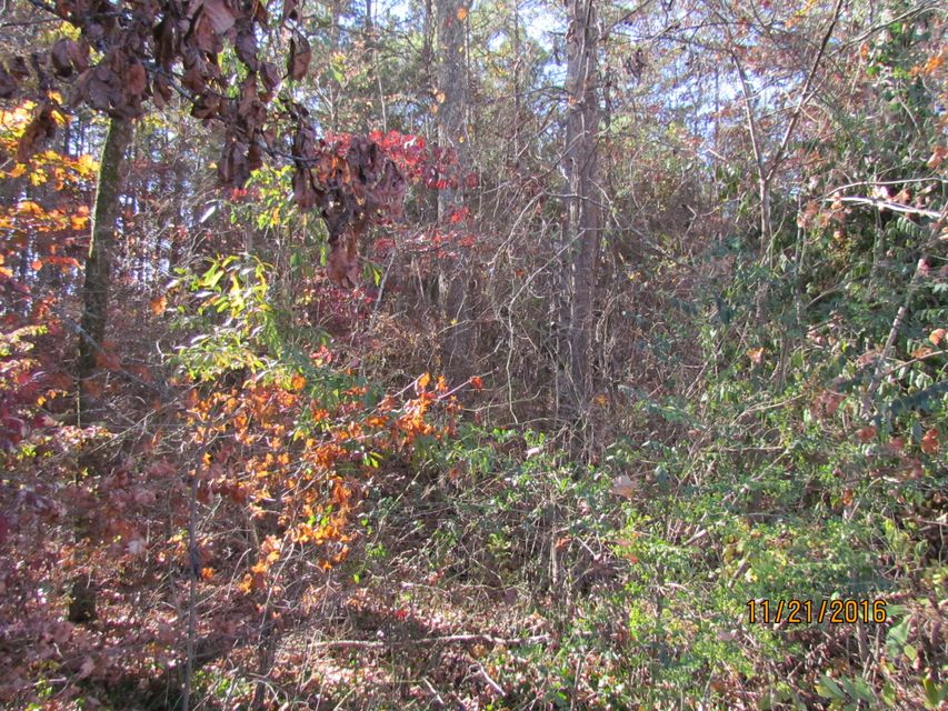 Additional photo for property listing at Hwy 321 & Williams Ferry Road  Lenoir City, Tennessee 37771 United States