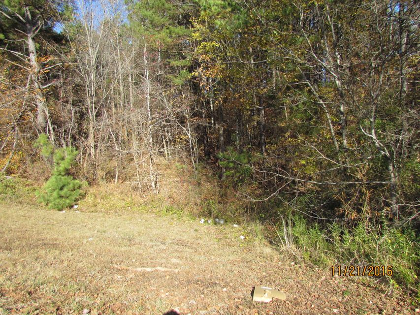 Additional photo for property listing at Hwy 321 & Williams Ferry Road  Lenoir City, Tennessee 37771 Estados Unidos