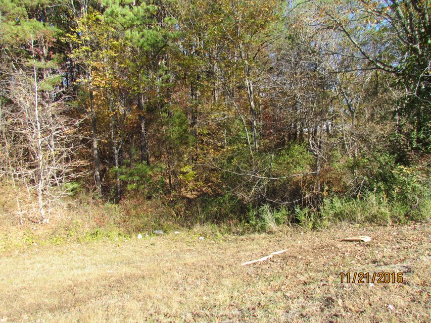 Additional photo for property listing at Hwy 321 & Williams Ferry Road  Lenoir City, Tennessee 37771 États-Unis
