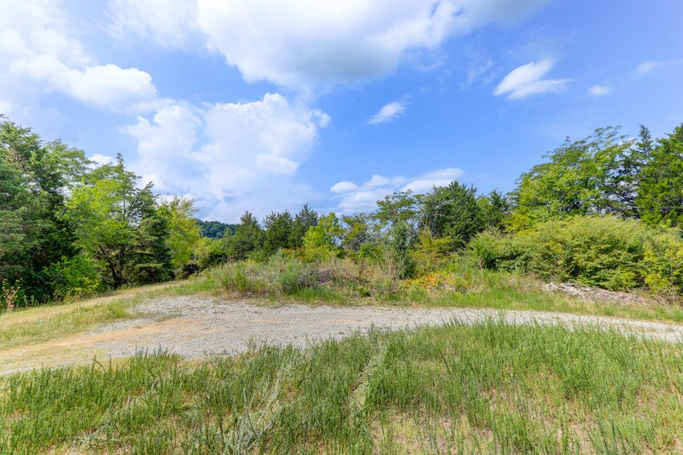Additional photo for property listing at 668 Cold Springs Road 668 Cold Springs Road 赛维尔维尔, 田纳西州 37876 美国