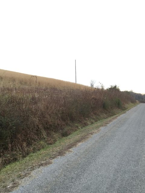 Additional photo for property listing at Co Rd 282 Co Rd 282 Niota, Tennessee 37826 Estados Unidos