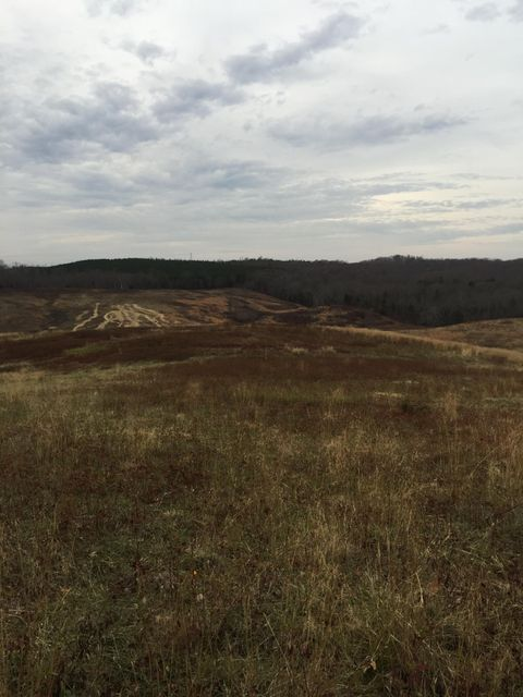 Additional photo for property listing at 59.7 Acres Co Rd 282 59.7 Acres Co Rd 282 Niota, Tennessee 37826 United States