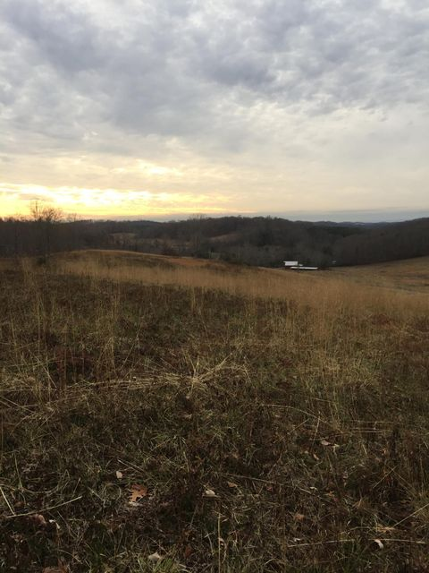 Additional photo for property listing at 59.7 Acres Co Rd 282  Niota, Tennessee 37826 États-Unis