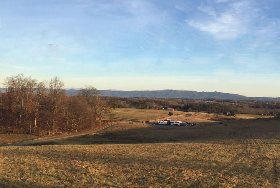 Additional photo for property listing at 9r-1 Morganton Road 9r-1 Morganton Road Greenback, Tennessee 37742 United States