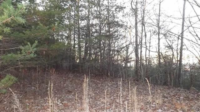 Additional photo for property listing at 697 Highlander Road 697 Highlander Road Grandview, Tennessee 37337 Estados Unidos