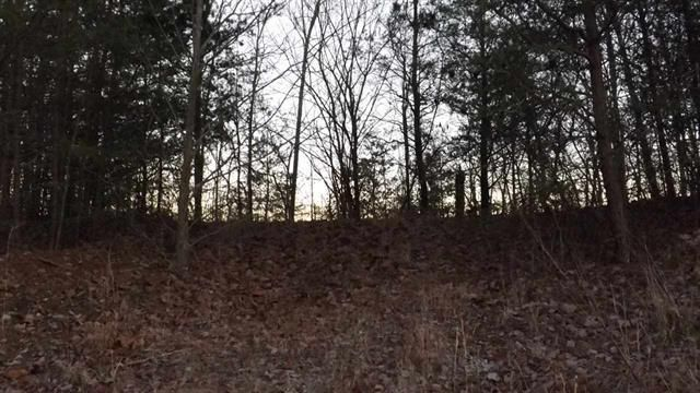 Additional photo for property listing at 697 Highlander Road 697 Highlander Road Grandview, Tennessee 37337 United States