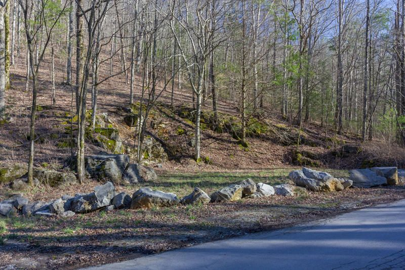 Additional photo for property listing at 1511 Old Cades Cove Road 1511 Old Cades Cove Road 汤森德, 田纳西州 37882 美国