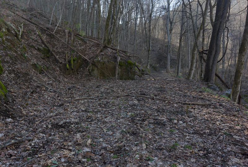 Additional photo for property listing at 1511 Old Cades Cove Road  Townsend, Tennessee 37882 États-Unis