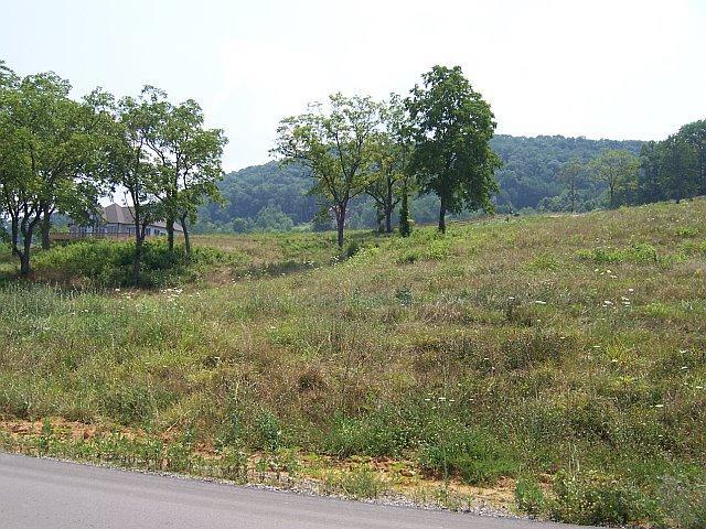 Terrain pour l Vente à Russell Brothers Road Sharps Chapel, Tennessee 37866 États-Unis