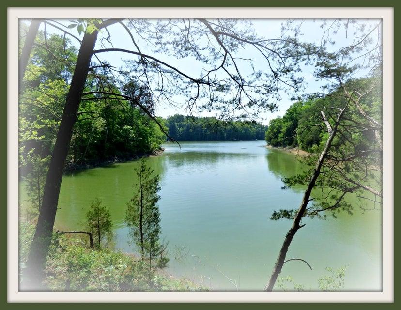 Земля для того Продажа на P-30 Burchfield Road P-30 Burchfield Road Dandridge, Теннесси 37725 Соединенные Штаты