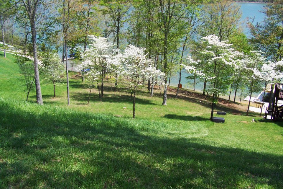 Land for Sale at 426 Norris Crest Drive Lafollette, Tennessee 37766 United States