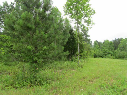 Additional photo for property listing at 118 County Road 226  Niota, 田纳西州 37826 美国
