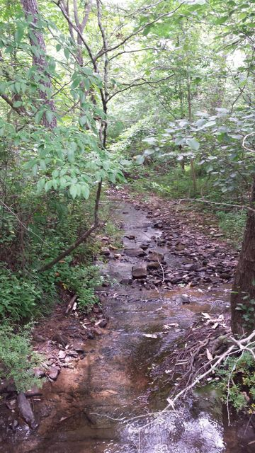 Land for Sale at 2703 Allegheny Loop Road 2703 Allegheny Loop Road Maryville, Tennessee 37803 United States
