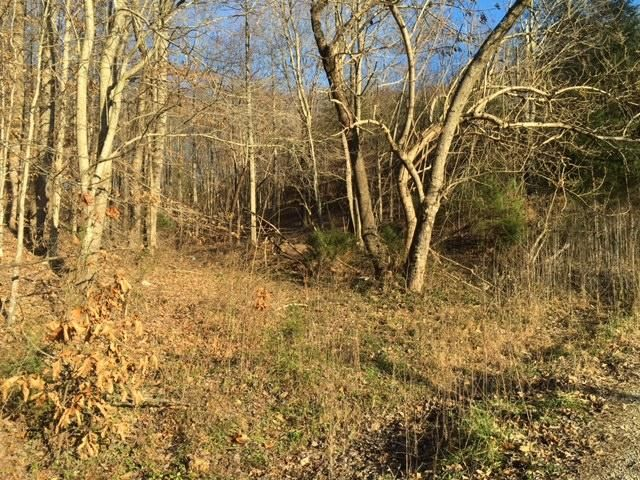 Additional photo for property listing at Minton Hollow Road Minton Hollow Road New Tazewell, 田纳西州 37825 美国