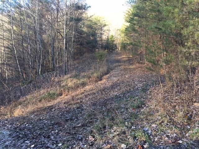 Additional photo for property listing at Minton Hollow Road  New Tazewell, Tennessee 37825 États-Unis