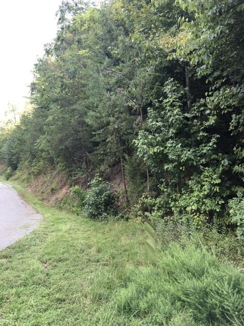 Additional photo for property listing at Mountain Shores Road  New Tazewell, Tennessee 37825 Estados Unidos
