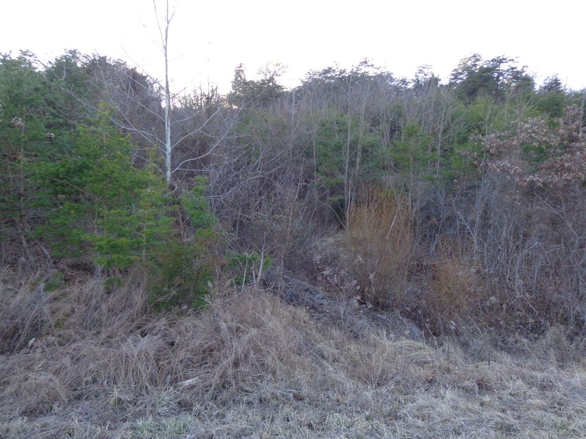 Additional photo for property listing at Lot 48,49* Landover Way Lot 48,49* Landover Way White Pine, Tennessee 37890 United States