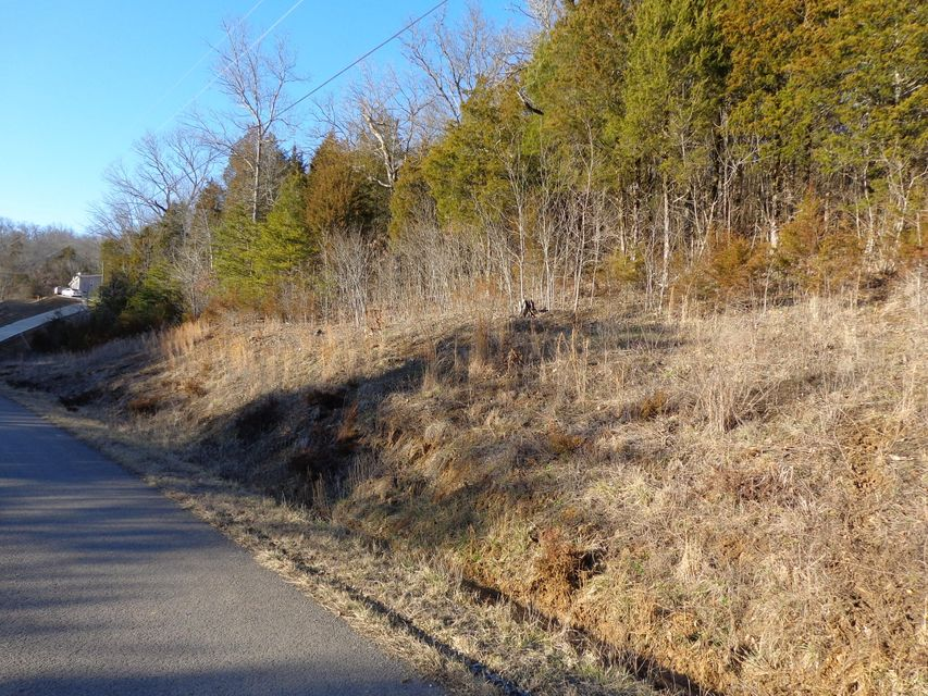 Land for Sale at Lots 79,81 Hollow Springs Way White Pine, Tennessee 37890 United States