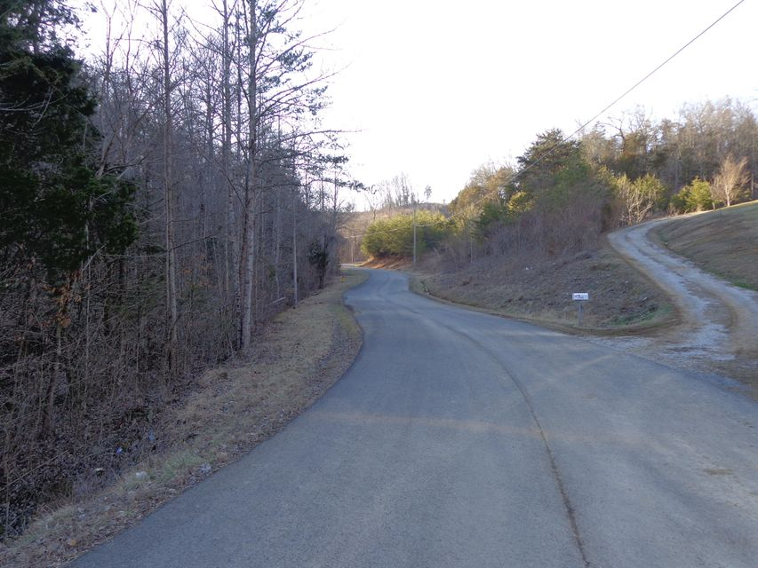 Additional photo for property listing at Lots 76-78 Hollow Springs Way Lots 76-78 Hollow Springs Way White Pine, 田纳西州 37890 美国