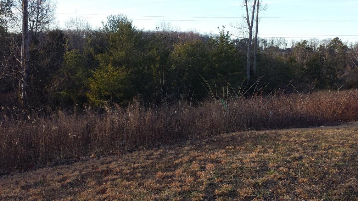 Terrain pour l Vente à 3841 Lt 15 Hillside Terrace Lane Knoxville, Tennessee 37924 États-Unis